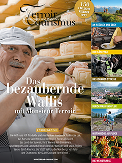 brochure-wallis.png